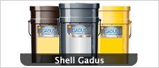 shell-gadus