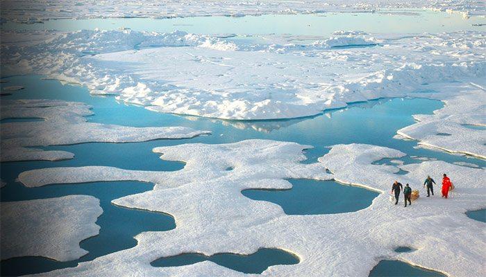 Shell se implică în problema schimbărilor climatice