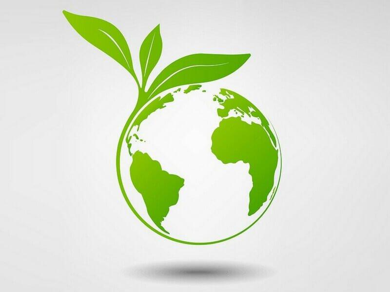 Cum sa iti faci business-ul mai prietenos cu mediul
