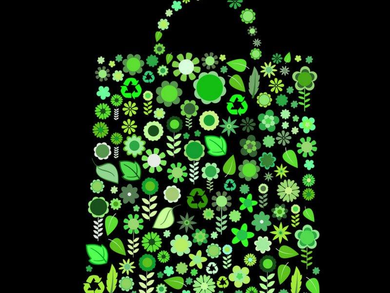 Practici ecologiste: ai grija de mediul inconjurator!