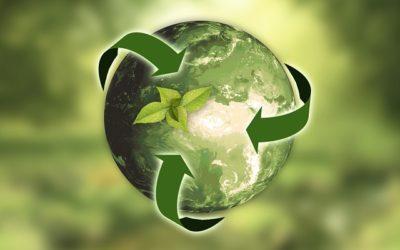 De ce refacerea naturii este atat de importanta pentru limitarea schimbarii climatice?