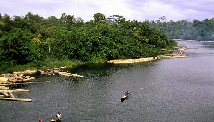 Eliminarea solului contaminat cu petrol din Delta Nigerului – preocupare de top pentru cercetatori