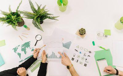 15 termeni din domeniul sustenabilitatii pe care trebuie sa ii stii
