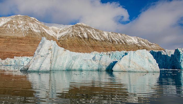 Zapada din Antarctica devine verde – iar schimbarea climatica va transforma si mai mult fata Antarcticii