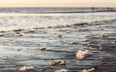 Calitatea apei: inca un motiv de ingrijorare la plaja