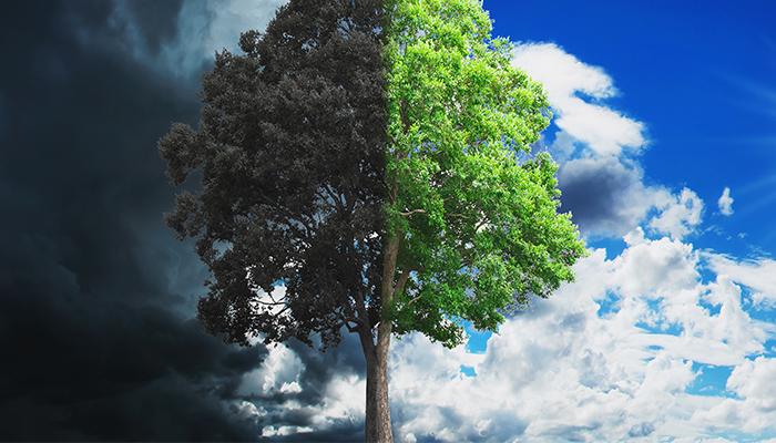 Impiedicarea efectului dublu de bumerang asupra mediului
