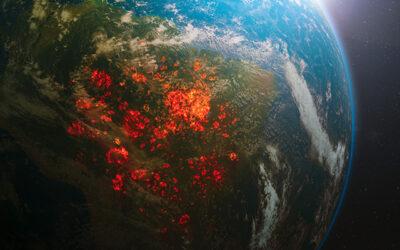 Oamenii exploateaza si distrug natura la o scara fara precedent
