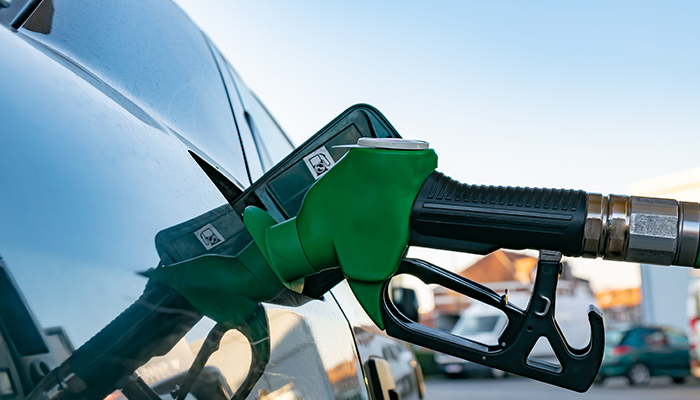 Biocombustibilii