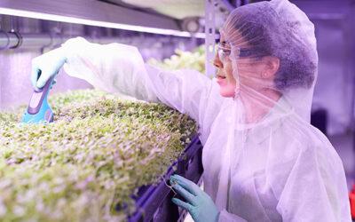 Femeile inginer deschid calea agriculturii sustenabile in Iordania