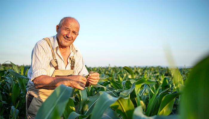 Beneficiile vremurilor dedemult: putem face agricultura asemeni bunicilor nostri?