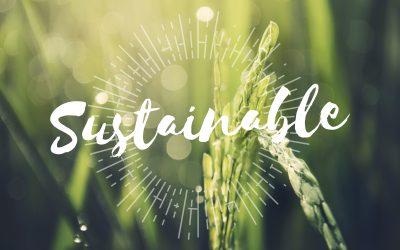 Fresh Del Monte si-a anuntat Obiectivele de Sustenabilitate pentru 2030